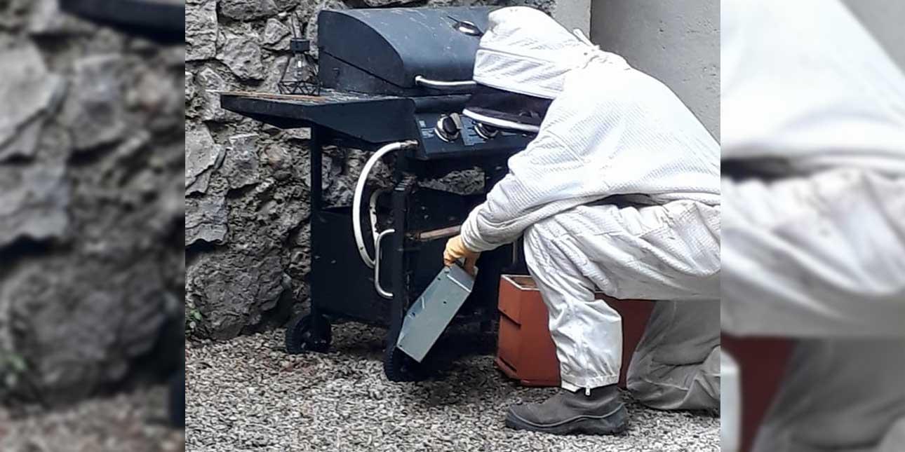 Notre apiculteur peu sauver votre barbec-parti^^